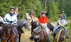 Wagon Wheel Ranch - Val Therese: $17 for a One-Hour Horseback Trail Ride at Wagonwheel Ranch in Val Therese ($35 Value)