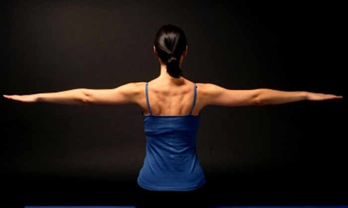 Pleasure Point Pilates - Santa Cruz: Four-Class Mat Package or Three Private Sessions at Pleasure Point Pilates