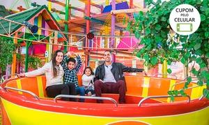 Parque Play House Florybal: Muita diversão! Ingresso com 10 ou 16 créditos, no Play House da Florybal - Canela
