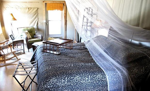 Vision Quest Safari Bed Amp Breakfast Groupon