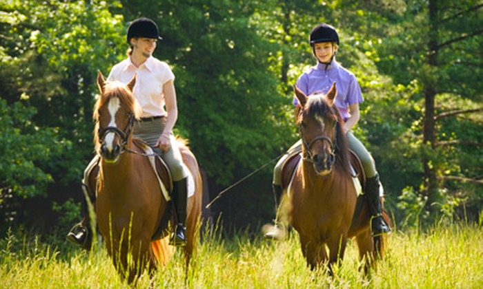 Champagne Stables - Keystone: Horseback Trail Ride for Two or Four or Three Private Riding Lessons at Champagne Stables in Odessa (Up to 55% Off)