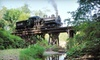 Mt Rainier Railroad and Logging Museum - Elbe: $11 for One Ticket to a Steam-Train Excursion on the Mt. Rainier Scenic Railroad in Elbe, WA (Up to $23 Value)