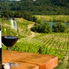 Up to Half Off Wine Tour for Up to Six People