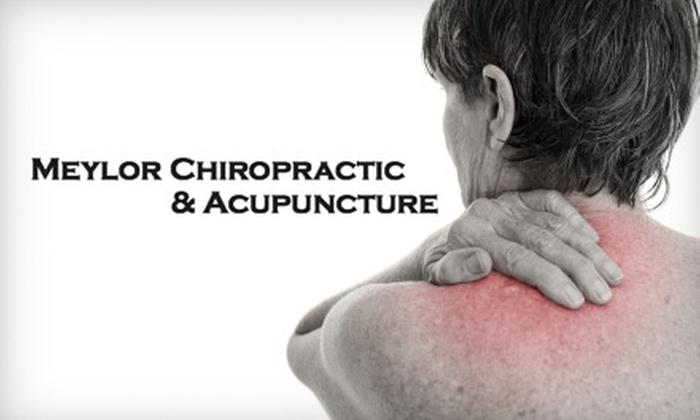 Meylor Chiropractic & Acupuncture - Lenexa: $39 Your Choice of a Chiropractic Exam, X-Rays, and Relief Treatment ($240 Value) or Two Acupuncture Treatments ($100 Value)