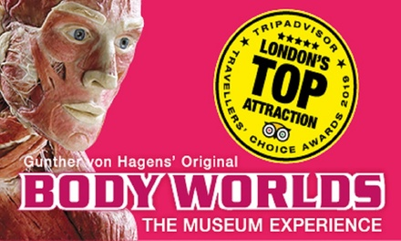 BODY WORLDS London Museum Experience