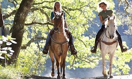 Paseo a caballo para 2 o 4 personas desde 19,99 € en Arrandeterra