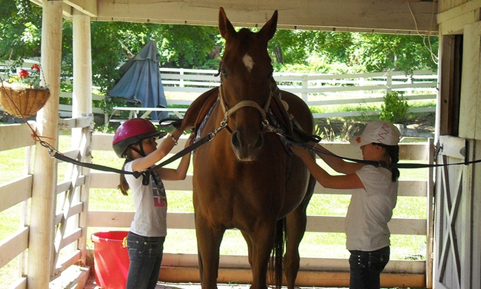 Five Days of Half-Day Horse Summer Camp at Fitzgerald Stables (34% Off)