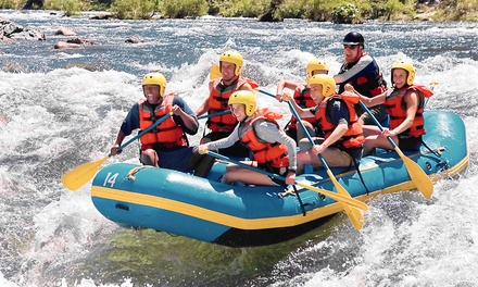 Zip-Lining Challenge, Kayak and Wine Adventure, or Whitewater Rafting from Outdoor Connections (Up to 40% Off)