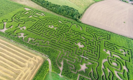 Maze Entry for One, Two or Family of Four at Maize Maze