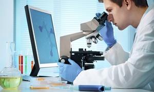 Poradnia Cel: Badanie analizatorem rezonansowym (49,99 zł), żywej kropli krwi (69,99 zł) i więcej w Poradni Cel w Gdyni (do -55%)