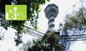 Illawarra Fly: Illawarra Fly: Rainforest Treetop Walk + Meal & Drink - Child ($19) or Adult ($25), Knights Hill (Up to $42 Value)