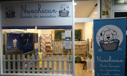 1 o 2 sesiones de peluquería para 1 o 2 perros desde 9,95 € en Nunchican