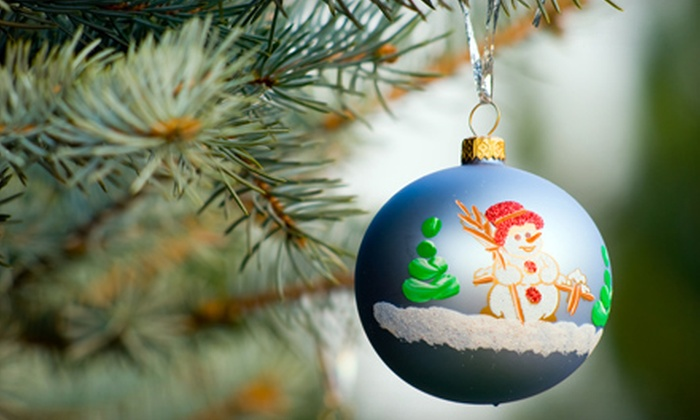 Tullio's Pottery Place - Carle Place: Holiday-Ornament Painting Session for One or Two at Tullio's Pottery Place (Up to 54% Off)