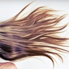 Up to 68% Off Haircut Packages at Platinum Salon