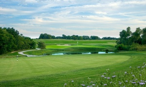 Up to 50% Off 18-Hole Round of Golf at The Bridges Golf Club