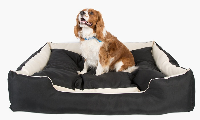 lit pour chien xxl imperm able groupon. Black Bedroom Furniture Sets. Home Design Ideas