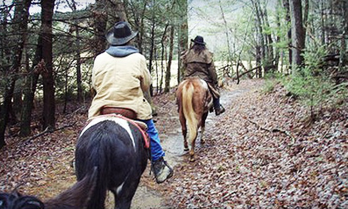 Five Oaks Riding Stables - Nashville: $29 for a One-Hour Horseback Trail Ride for Two from Five Oaks Riding Stables in Sevierville ($59.98 Value)