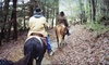 52% Off Horseback Trail Ride for 2 in Sevierville