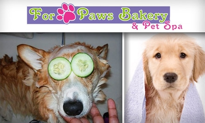 For Paws Bakery & Pet Spa - Denver: $49 for $100 Worth of Dog or Cat Grooming at For Paws Bakery & Pet Spa