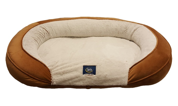 Surprising Serta Shredded Foam Oval Couch Dog Bed Groupon Uwap Interior Chair Design Uwaporg