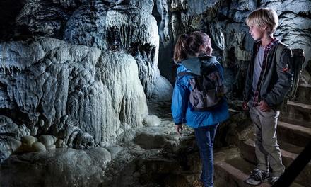 Ardennes : 1 ou 2 nuits, accès bien-être, dîner 3 plats et accès Grottes de Han à l'Hôtel Le Grenier des Grottes pour 2
