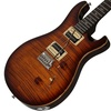 Paul Reed Smith Limited Edition Custom SE 24 Electric Guitar