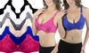 Women's Soft Cup Bras in Regular and Plus Sizes (6-Pack) : Women's Soft Cup Bras in Regular and Plus Sizes (6-Pack)
