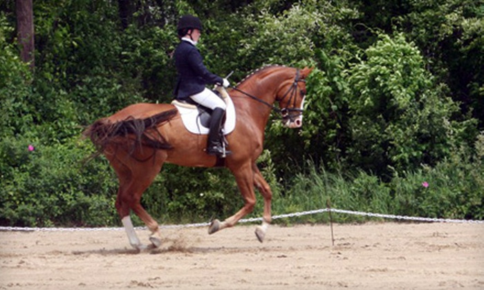 Woodwind Farm - Providence: $27 for a Horseback-Riding Lesson at Woodwind Farm in Hope ($55 Value)