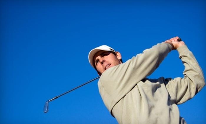 Reason's Golf Academy - Venice: $99 for Three-Hour Full-Swing Clinic at Reason's Golf Academy in Venice ($225 Value)