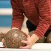 53% Off Bowling and Dinner at Fulton Bowling Center