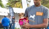 Up to 44%  Off Dog Walking Event Registration Fee