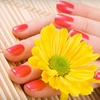 52% Off Shellac Manicure and Basic Pedicure