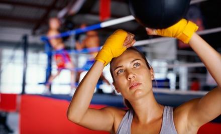 Dynamic Mixed Martial Arts - Dynamic Mixed Martial Arts in Modesto