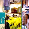Stellar26 - North Center: $20 for $40 Worth of Men and Women's Casual Apparel at Stellar26