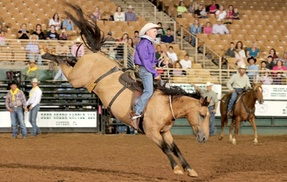 Florida Ranch Rodeo & Cowboy Heritage Festival: Florida Ranch Rodeo and Cowboy Heritage Festival for Two or Four on September 30 or October 1