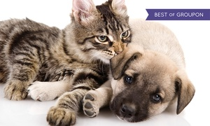 Choice Pet Supply: $25 for $40 Worth of Pet Food and Supplies at Choice Pet Supply. Two Locations Available.