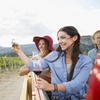 Guided Vineyard Tour and Tasting