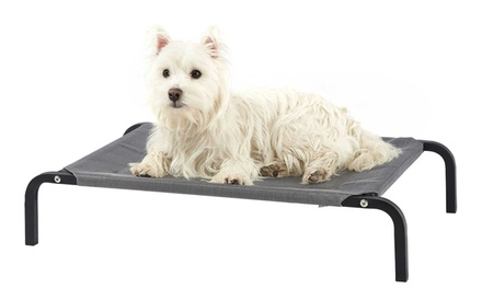 Bunty Elevated Portable Pet Bed