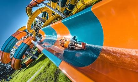 Unlimited Rides and Attractions without $39 or with $45 Water Park for One Person at The Big Banana Fun Park