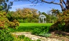 South Coast Botanic Garden Foundation - Rolling Hills Estates: 12-Month Basic Plus or Deluxe Membership at South Coast Botanic Garden Foundation (Up to 51% Off)