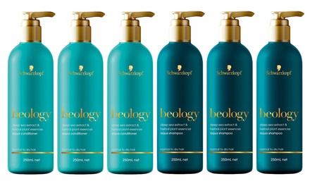 $19.95 for a SixPack of Schwarzkopf Beology Aqua Shampoo or Conditioner Don't Pay $83.94