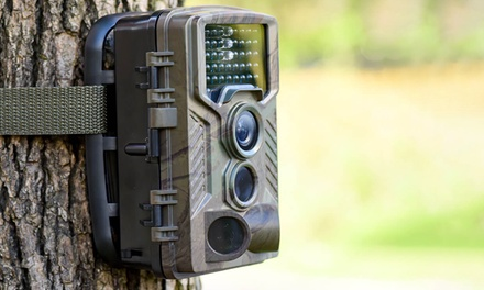 1080p Digital Wildlife Camera