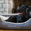 Eddie Bauer Ripstop Outer Shell Pet Bolster Bed