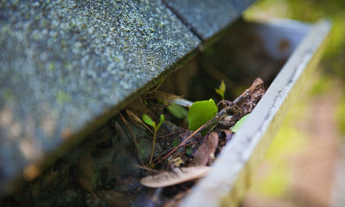 Quality Gutter & Pressure Cleaning - Lawrenceville: Gutter Cleaning from Quality Gutter & Pressure Cleaning (Up to 74% Off). Two Options Available.