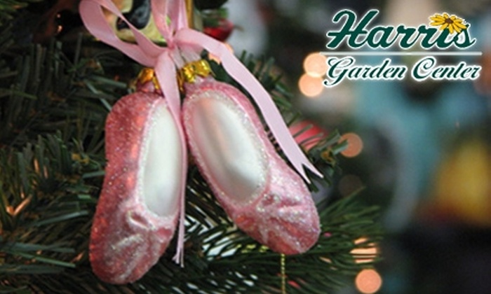 Harris Garden Center - Webster: $10 for $20 Worth of Holiday Ornaments at Harris Garden Center