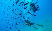 Bautismo de buceo o curso PADI Scuba Diver para 1 persona desde29,95 € enScubazul