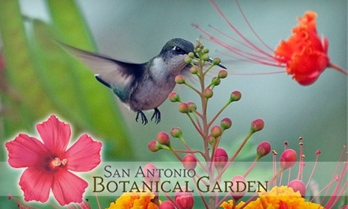 San Antonio Botanical Garden - Mahncke Park: $32 for One-Year Family Membership ($65 Value) or $22 for One-Year Individual Membership ($45 Value) at San Antonio Botanical Garden