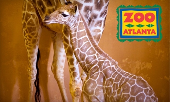 "Zoo Atlanta - Grant Park: $10 for One General Admission to Zoo Atlanta (Up to $20.99 Value) Plus Free Entry to ""Name The Baby Giraffe"" Sweepstakes*"