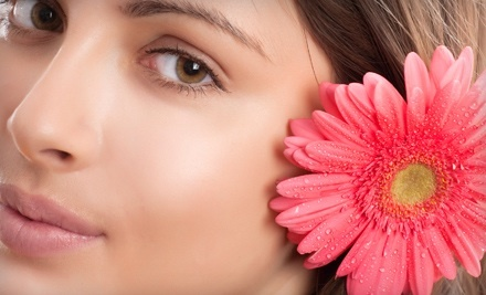 3 Endermologie Lipomassage Sessions for the Hips, Thighs and Behind (a $225 value) - Little Flower Day Spa and Aesthetic Specialties in Mountain Brook Village
