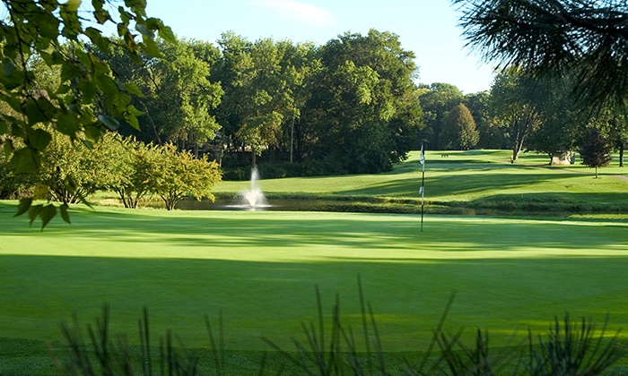 Golfvisions In Cary Il Groupon